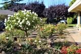160 Hacienda Carmel - Photo 19