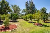 45901 Sandia Creek Drive - Photo 21