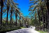50 Corniche Drive - Photo 1