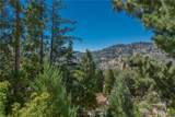 934 Grass Valley Road - Photo 14