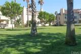 27843 Via Del Agua - Photo 12