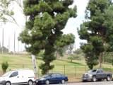 736 Garfield Avenue - Photo 21