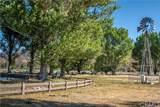 61300 San Vito Circle - Photo 56