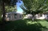 36165 Wildwood Canyon Road - Photo 52