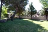 36165 Wildwood Canyon Road - Photo 59