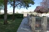 36165 Wildwood Canyon Road - Photo 66