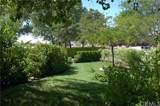 36165 Wildwood Canyon Road - Photo 9