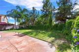 31743 Pepper Tree Street - Photo 38