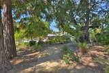 26724 Palo Hills Drive - Photo 32