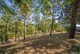 10 Pine Cone - Photo 29