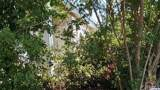 3933 Point Dr Drive - Photo 1