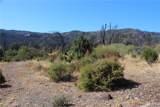 11155 Socrates Mine Road - Photo 5