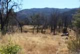11155 Socrates Mine Road - Photo 9