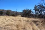 11155 Socrates Mine Road - Photo 10