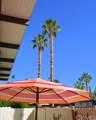 1111 E Palm Canyon Drive - Photo 22