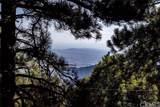 31622 Panorama Drive - Photo 48