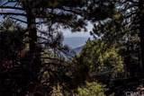 31622 Panorama Drive - Photo 8