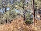 8820 Deer Trail Court - Photo 2