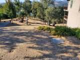 8820 Deer Trail Court - Photo 4