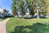 25785 Sunrise Way - Photo 46