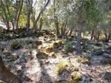 10631 Edgewater Drive - Photo 7