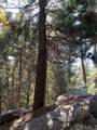 0 Lakeland View Road - Photo 11