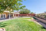 3620 Desert Oak Drive - Photo 28