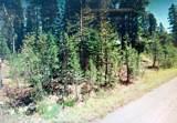 5208 Palisade Road - Photo 1
