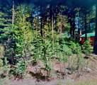 5208 Palisade Road - Photo 7