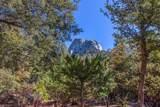 55599 Encino Road - Photo 8