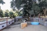 40544 San Francisquito Canyon Road - Photo 40