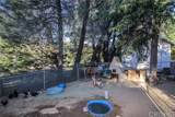 40544 San Francisquito Canyon Road - Photo 45
