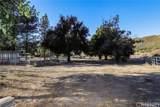 40544 San Francisquito Canyon Road - Photo 51