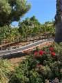 26550 Rio Vista Drive - Photo 12