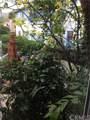 245 Cypress Drive - Photo 11