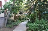 20234 Cantara Street - Photo 2