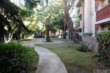 20234 Cantara Street - Photo 3