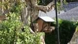 33908 Cape Cove - Photo 33