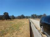 0 Foxtail Ranch Rd - Photo 3