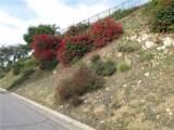 0 West Via Santa Catarina - Photo 1