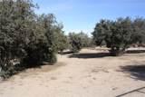 10782 Ranchero Road - Photo 29