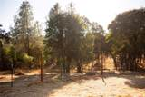 6718 Rancheria Creek Road - Photo 35