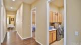 10314 Silverberry Street - Photo 13