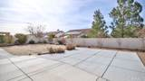 10314 Silverberry Street - Photo 20