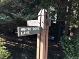 28980 White Dove Lane - Photo 1