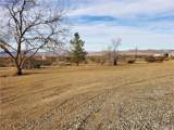 49640 Cholla Road - Photo 25