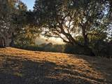 8345 Vista Monterra (Lot 151) - Photo 2