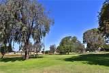 6542 Abbott Drive - Photo 56