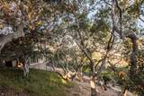 27471 Vista Del Toro Place - Photo 15