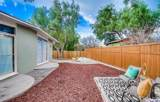 10628 Vanora Drive - Photo 10